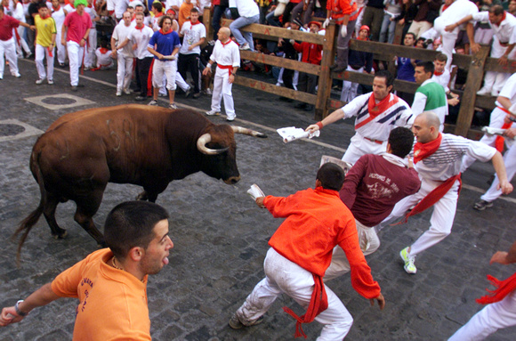 Runners guide a fighting bull